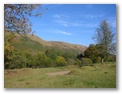 Hollywood Cottage - Holiday Cottages Wales - View up valley from back of house